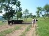 Farma Zelená Bohdaneč