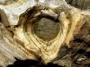 Purkynovo oko