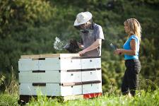 Včelí farma Rokytník