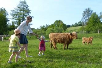Výlet s dětmi na farmu, na obrázku si děti prohlíží zvířátk na farmě