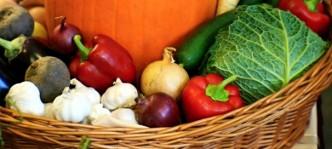 Fotografie sezonní zeleniny z festivalu gastro food fest