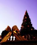 Vánoční dům, zámek Doubí