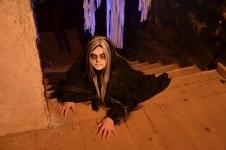 Noční strašidelná prohlídka Draxmooru3