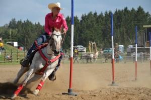 ukázka výcviku koní- den koní ve westernovém městečku Šiklův mlýn