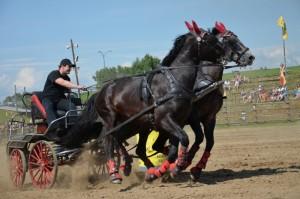 povoz s koňmi na akci den koně- westernové městečko Šikland