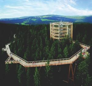 stezka korunami stromů s vyhlídkovou věží na Lipně