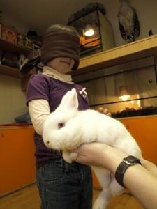 holčička hladí králíčka se šátkem přes oči na akci ZOO Děčín den bílé hole