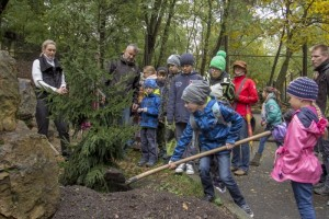 Sázení stromů v ZOO Chomutov