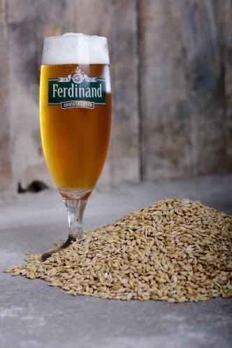 Sklenice piva Ferdinand