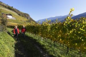 Podzim v Jižním Tyrolsku II.