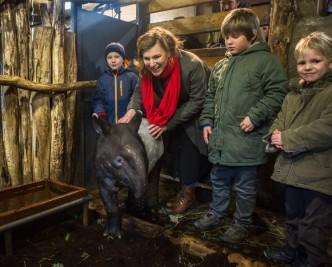 _ Mládě tapíra čabrakového v ZOO Praha při křtinách