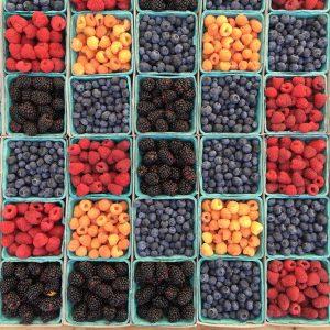 Bobulové ovoce k článku o příznivém účinku borůvek, jahod, malin a rybízu pro naše zdraví