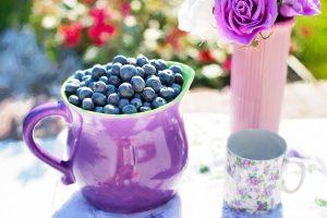 Borůvky-lék proti stresu, článek zdravotní účinky borůvek